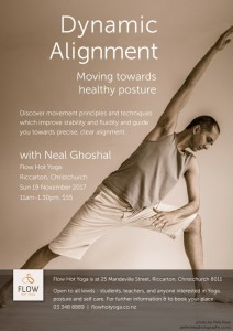 Dynamic Alignment with Neal Ghoshal, Flow Hot Yoga, Nov 2017 web