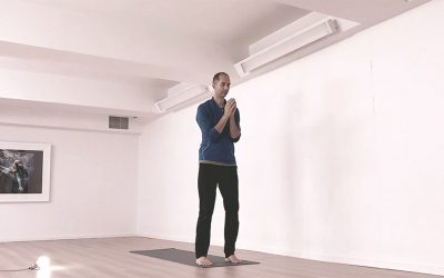 Sun Salutation, Yielding and Sequencing Through Movement